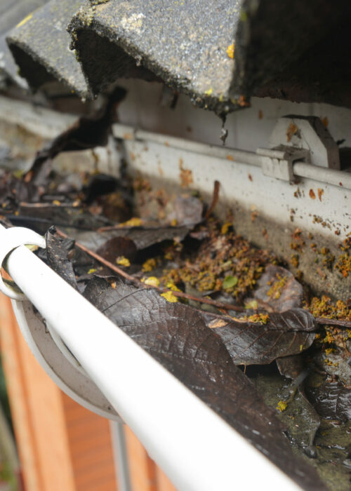 Rain Gutter Cleaning from Leaves and Dirt. Roof Gutter Drainage Cleaning Tips. Clean Your Gutters Before They Clean Out Your Wallet. Guttering Works.